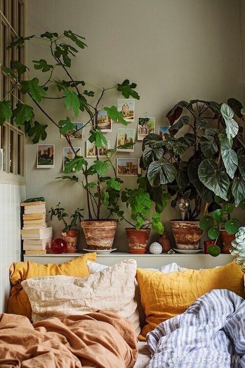 Ý tưởng trang trí phòng ngủ nhỏ cuốn hút mọi ánh mắt trang tri phong ngu nho 16