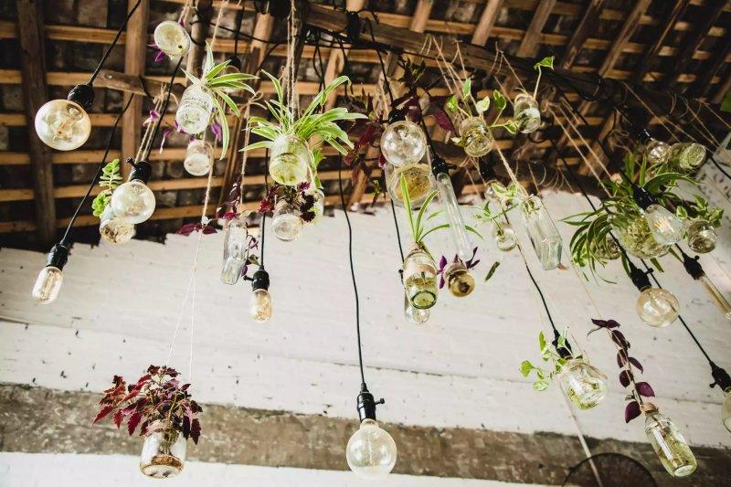 Chụp từ bên dưới - một số hộp thủy tinh treo cây từ đèn trần.