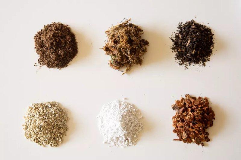Soilless Potting Mix là gì? Vì sao nó được sử dụng thay cho đất vườn thông thường