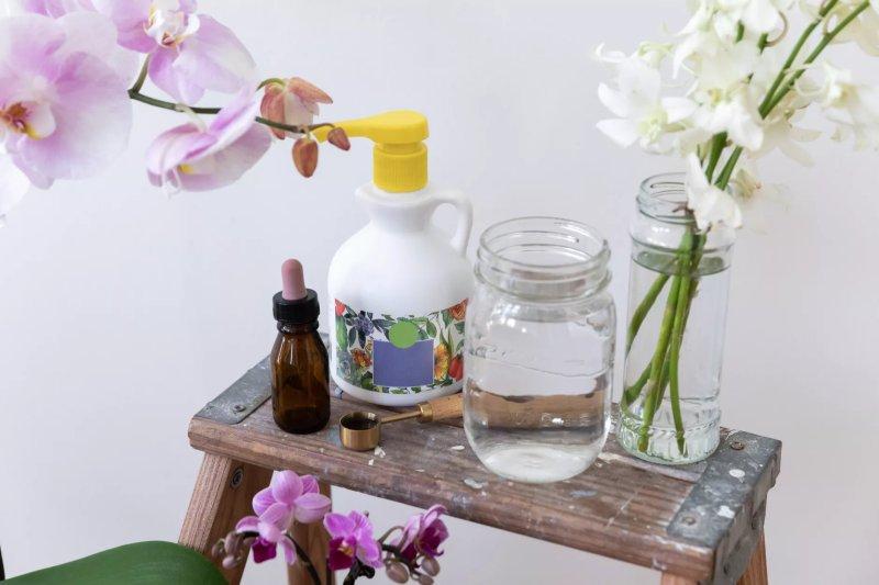 Lựa chọn phân bón cho hoa lan để giúp cây phát triển tốt nhất. The Spruce / Letícia Almeida