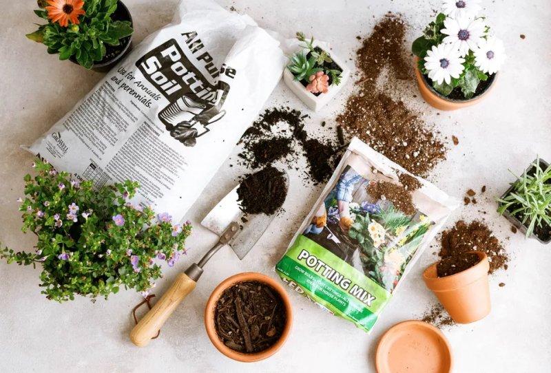Đất Potting Soil và Potting Mix: Những sự khác biệt cần biết