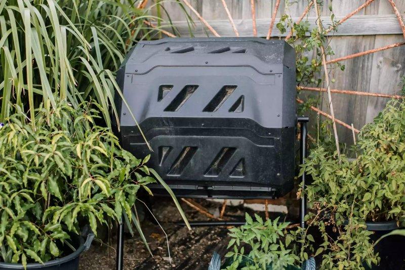 trồng nhiều cây bụi xung quanh thùng phân compost